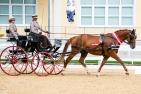 Die AWÖ-Bundeschampionate in Stadl-Paura nehmen Fahrt auf