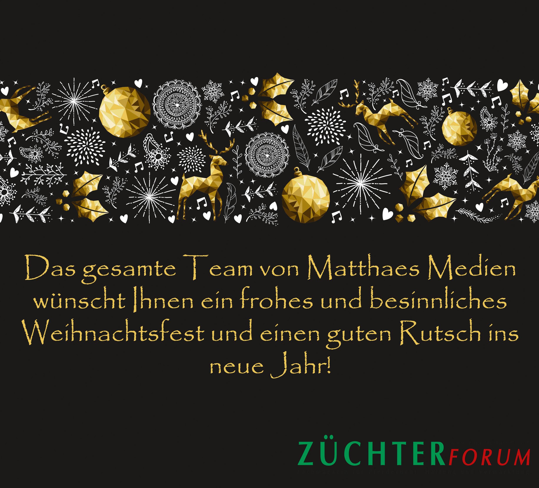 Frohe Weihnachten Besinnliche Feiertage.Frohe Weihnachten Und Einen Guten Rutsch Ins Neues Jahr Züchterforum